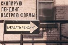 Копирование и настройка Landing Page + настройка работы форм 21 - kwork.ru