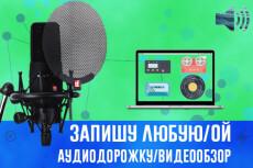 Предоставляю звукозапись вашего контента на проф. оборудовании 3 - kwork.ru