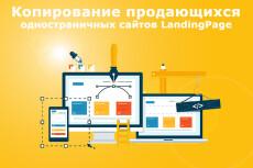 Копия лендинга под ключ 36 - kwork.ru
