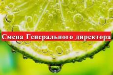 Пакет документов для Регистрации ООО, ИП 6 - kwork.ru