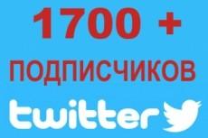1700 подписчиков на Ваш аккаунт в Twitter 8 - kwork.ru
