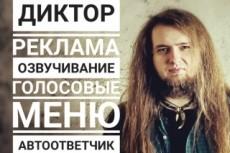 Запишу IVR или голосовое меню стильно и привлекательно 12 - kwork.ru