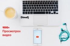 8000 тысяч просмотров для вашего сайта + 2000 тысячи в подарок 10 - kwork.ru