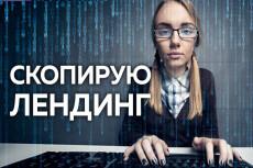 Посажу стильный лендинг на ваш хостинг и заменю тексты 15 - kwork.ru