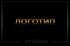Дизайн Логотипа за час 53 - kwork.ru