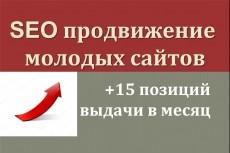 Проведу внутреннюю SEO-оптимизацию сайта 4 - kwork.ru