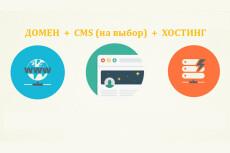 Регистрация домена и хостинга, установка CMS WordPress 5 - kwork.ru