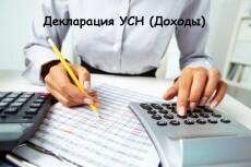 Декларации УСН для ИП, ООО 8 - kwork.ru