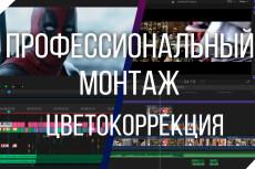 Инфографика и анимация для видео 17 - kwork.ru