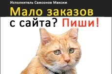 Яндекс Директ за 1 день. 3 кворка в 1. Поиск + РСЯ + Ретаргетинг 19 - kwork.ru