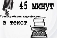 Качественная транскрибация, перевод аудио и видео в текст 17 - kwork.ru