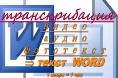 Транскрибация - расшифровка аудио- и видеозаписей в текст 14 - kwork.ru