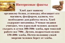 Выявление битых ссылок в рекламных кампаниях 15 - kwork.ru