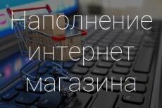 Наполню каталог интернет-магазина товарами 100 товаров 4 - kwork.ru