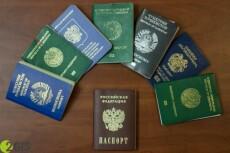 Как получить гражданство РФ 2 - kwork.ru