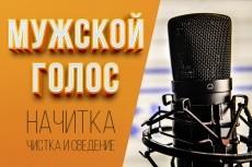 Озвучивание текста мужским голосом 4 - kwork.ru