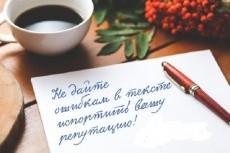Транскрибация, расшифровка. Переведу в текст час звука с аудио,видео 9 - kwork.ru