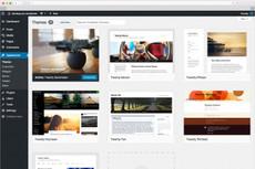 Создам landing page  на CMS WordPress 3 - kwork.ru