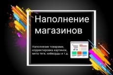Добавлю атрибуты характеристики к товарам 3 - kwork.ru