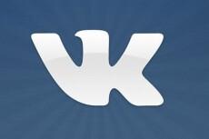 Продвину 2000 просмотров к вашей записи Вконтакте 13 - kwork.ru