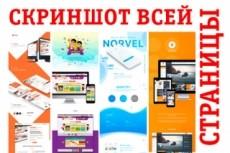 Скриншот всей страницы сайта целиком 20 - kwork.ru