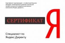 Настройка Яндекс. Директ от сертифицированного специалиста 31 - kwork.ru