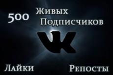 ВКонтакте - Вступившие - В паблик - группу. Качество 14 - kwork.ru