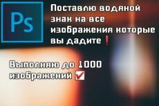 Добавление водяного знака на  50 изображении 19 - kwork.ru