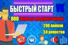 Раскрутка группы Вконтакте - плюс 600 живых подписчиков, продвижение 7 - kwork.ru