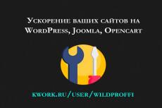 Ускорю Ваш сайт на WordPress 19 - kwork.ru