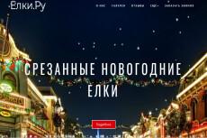 Готовый сайт Landing Page Услуги патронажа 23 - kwork.ru