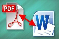 Конвертация текстовых файлов PDF, RTF, WORD и иных форматов 6 - kwork.ru