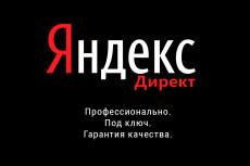 Настройка контекстной рекламы в Яндекс. Директ от Специалиста 16 - kwork.ru