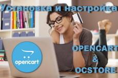 Opencart, OcStore. Установка и настройка 11 - kwork.ru
