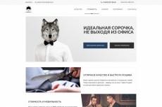 Настраиваю Яндекс.Директ. Поиск, РСЯ, ретаргетинг 3 - kwork.ru