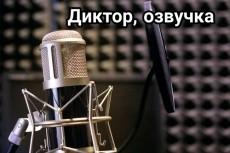 Транскрибация - перевод из видео в текст или из аудио в текст 4 - kwork.ru