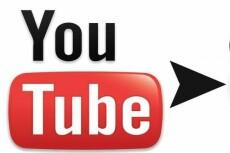 Извлеку звук с роликов на YouTube, Rutube, Dailymotion 5 - kwork.ru