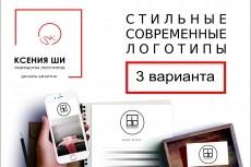 3 стильных логотипа 56 - kwork.ru
