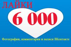 555 подписчиков на паблик, группу Вконтакте 20 - kwork.ru