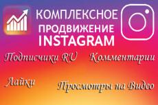 3000 Качественных Подписчиков Instagram плюс Лайки 21 - kwork.ru
