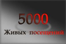 Трафик 16 - kwork.ru
