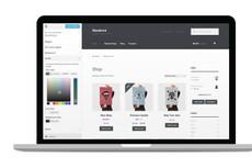 Доработаю Ваш интернет-магазин на CMS OpenCart - ocStore 7 - kwork.ru
