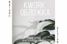Обложка вконтакте 2х 3 - kwork.ru