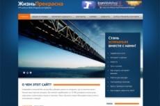Оптимизирую ваш сайт на WordPress 5 - kwork.ru