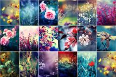3600+ Видеошаблонов для Adobe After Effects с Videohive 59 - kwork.ru