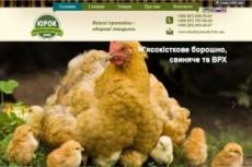 Сайт с вашим дизайном 13 - kwork.ru