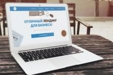 Лендинг с конверсий от 30% за 24 часа. Не успею - верну деньги 7 - kwork.ru