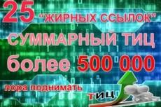 30 неприлично жирных ссылок. Общий ТИЦ трастов 100.000+ 11 - kwork.ru