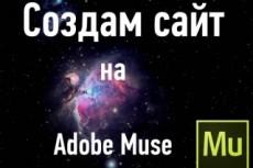 Сделаю красивый сайт на платформе Adobe Muse 41 - kwork.ru