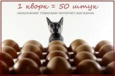 Наполню интернет-магазин 50 товаров 23 - kwork.ru